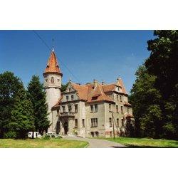 Zdjęcie pałacu w Laskach
