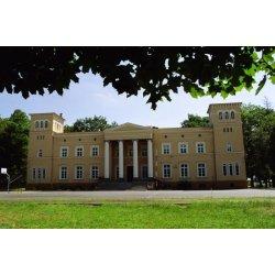 Zdjęcie Pałacu Feliksa Wężyka